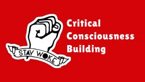 MCN Critical Consciousness